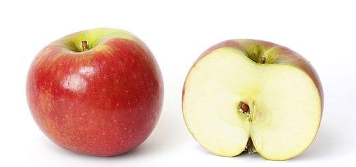 Apple Seeds Rumor