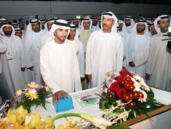 Hamdan Bin Mohammed Bin Rashid Sports Complex 4