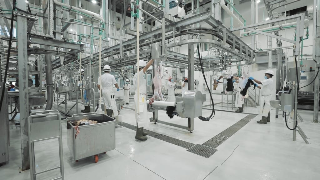 Dubai Abattoir